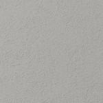 Silkwort PG2C2 LRV: 51.00
